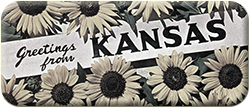 Greetings from Kansas - Postcards